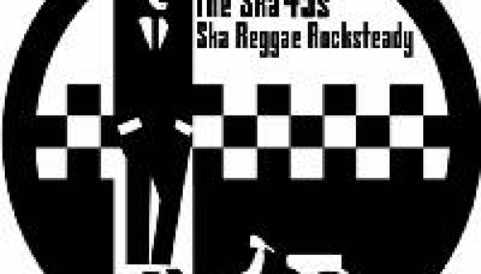 The Ska45s Band